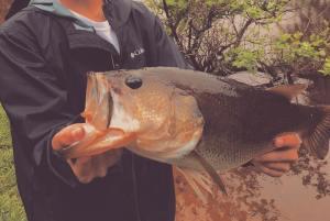 #skifflife Fish Tribe on the Vibe