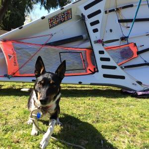 Time for a polish in preparation for Spring Sail at        …