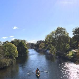 A stunning Autumn day in Thames Ditton    …