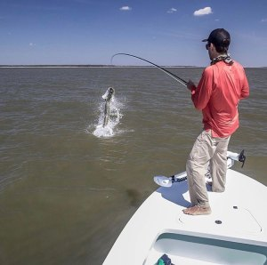 When the tarpon puts on a show for you . . . . . . . . …