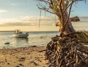 Coastal Everglades Skiff Life