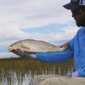 Last redfish of November for me in the lowcountry.  Next stop Middle of nowhere …