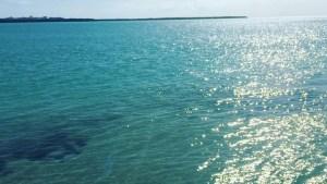 No boats just water –  …