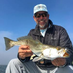 """Four Speckled Trout over 23"""""""