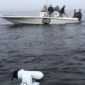 Big thanks to  for the Tarpon bait delivery in the fog yesterday morning your th…