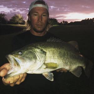 Chunky Largemouth bass
