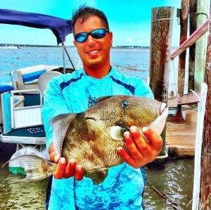 Beast triggerfish!