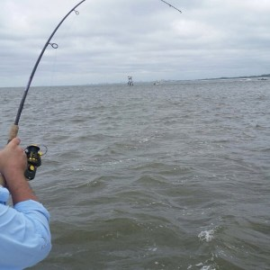 Capt. Josh at The Jettys landing 6 Bulls in 35 minutes of work , well I chose an…