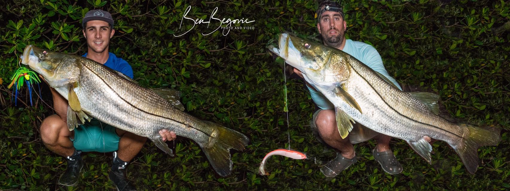 snook-fishing-florida