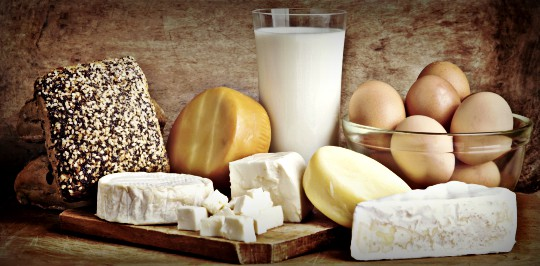 Livestock ByProducts: Milk, Cheese, Eggs