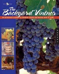 The Backyard Vinyard