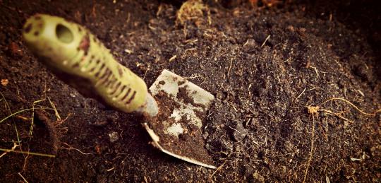 cat hole shovel in dirt