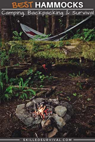 Best Hammock Hanging Near A Fire In A Wilderness Campsite