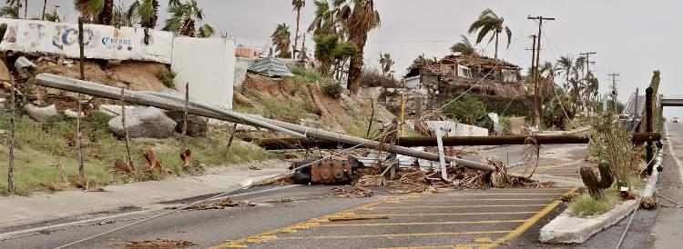 Hurricane Damage Street Blocked