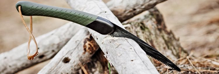 Folding saw stuck in tree in forest