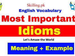 100 Important Idioms