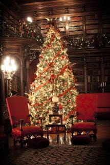 Biltmore Estate Library Christmas - Skimbaco Lifestyle