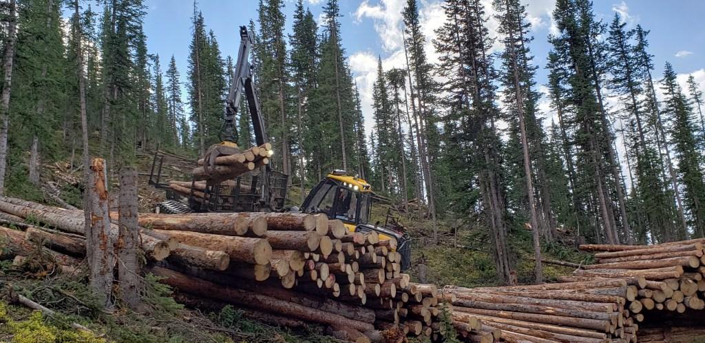 Log Forwarder