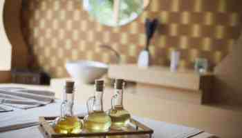 Voordelen van castorolie