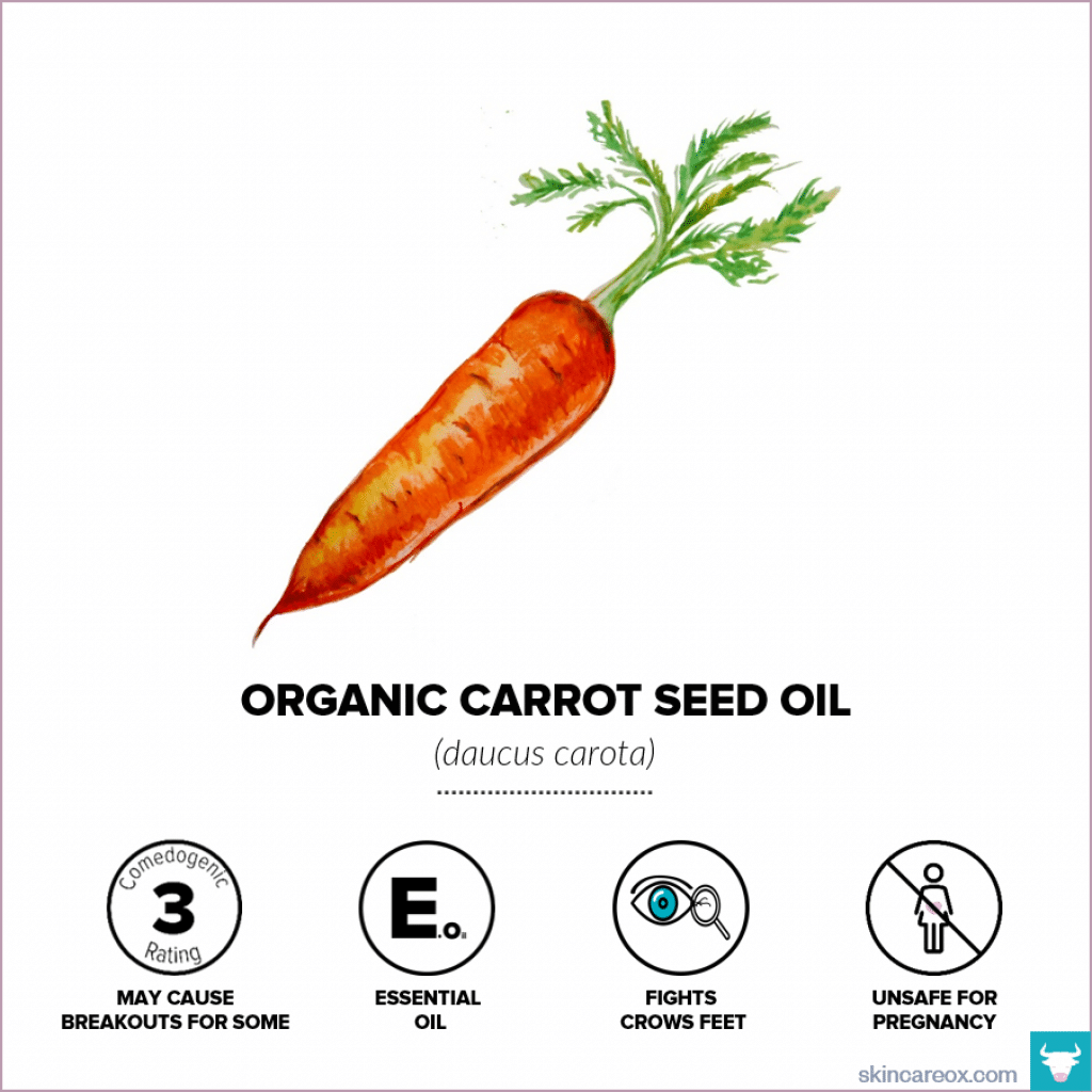 Organic skin care oils. Organic carrot seed oil infographic with comedogenic rating, safety information, and useful tips.