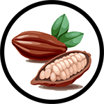 Organic Cocoa Butter as Ingredient in Organic Body Lotion