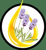 Organic Essential Oils_Organic Deodorant Ingredients