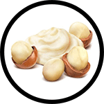 Organic Shea Butter Ingredient for Organic Body Lotions
