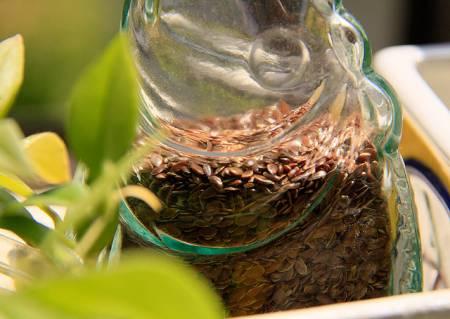 flax-seeds