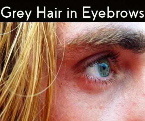 grey hair in eyebrows