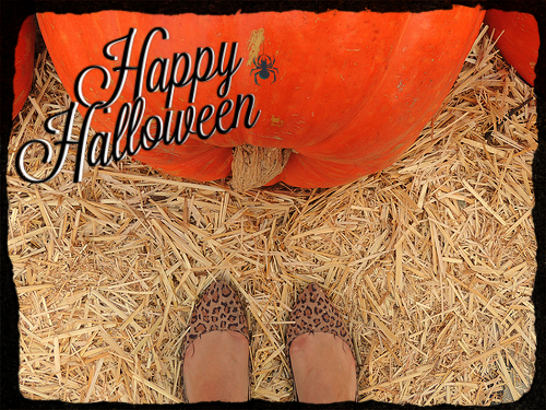 Skinned Knees Happy Halloween Pumpkin Patch Fashion Fatshion Latina Blogger Fat Blogger Lifestyle Blogger