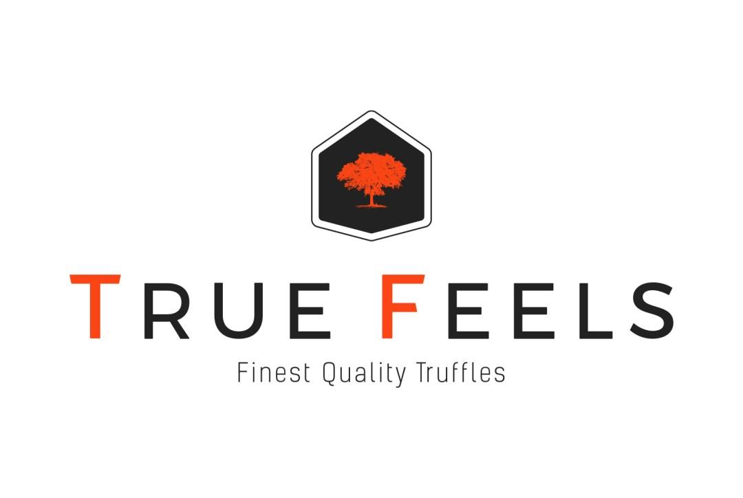 True Feels – Logo