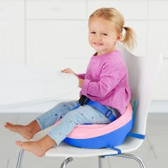 Toddler Chair Booster Seat Chicco High Zoo Skiphop Com