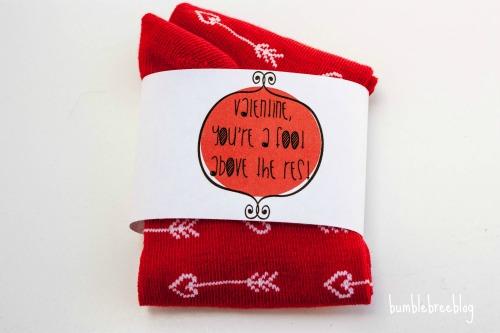 Punny Sock Valentine Skip To My Lou