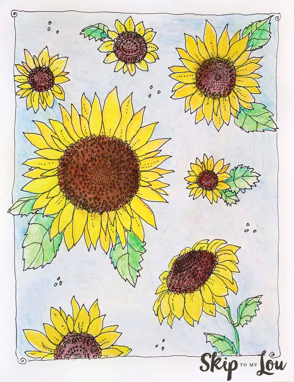Sunflower Coloring Page Skip To My Lou