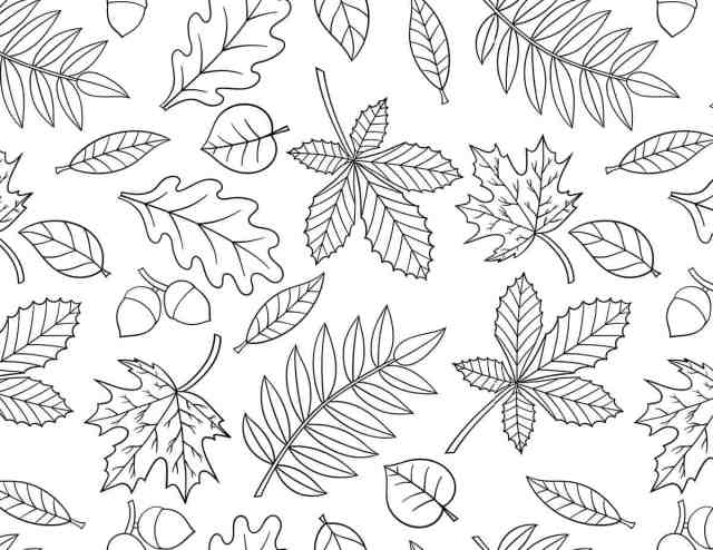 FREE Printable Fall Coloring Pages  Skip To My Lou