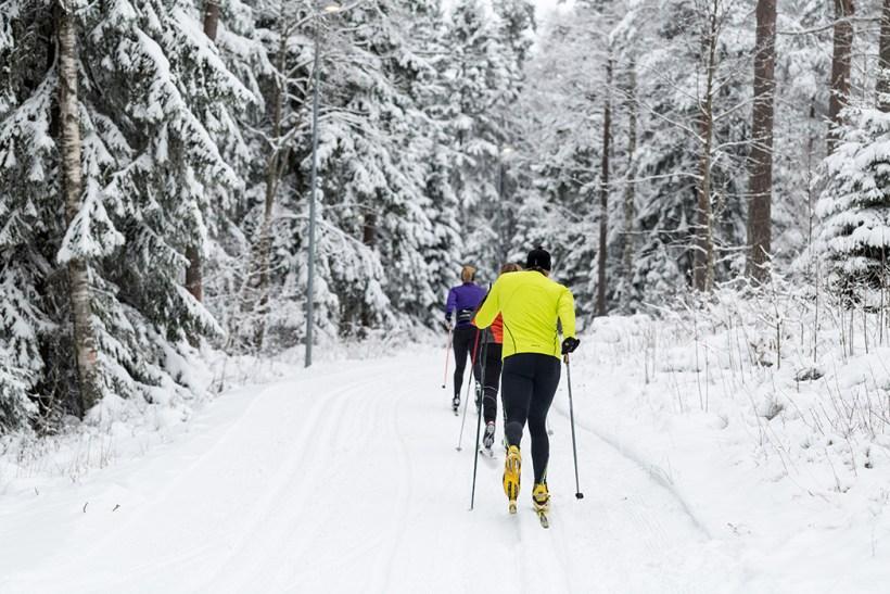 Billingen vinterbilder2015-foto-tuana-1