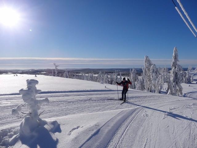 På Långberget er der masser af langrend og yoga-skiløb