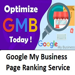 Google My Business Page Ranking Service