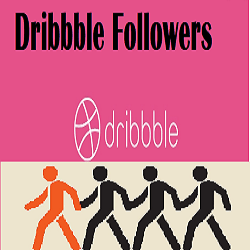 Dribbble Followers
