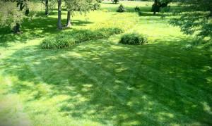 Lawn-LawnCare-Grass-Mowing-SKLawnCare