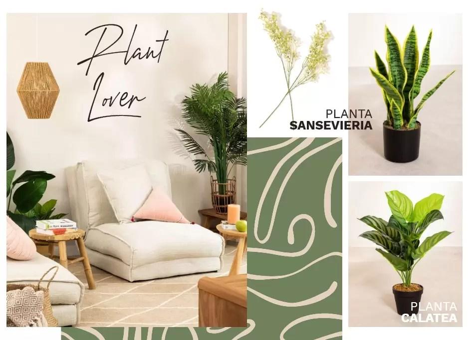plantas decoracion tendencia
