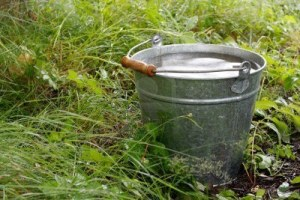 7526797-bucket-with-rainwater-in-grass