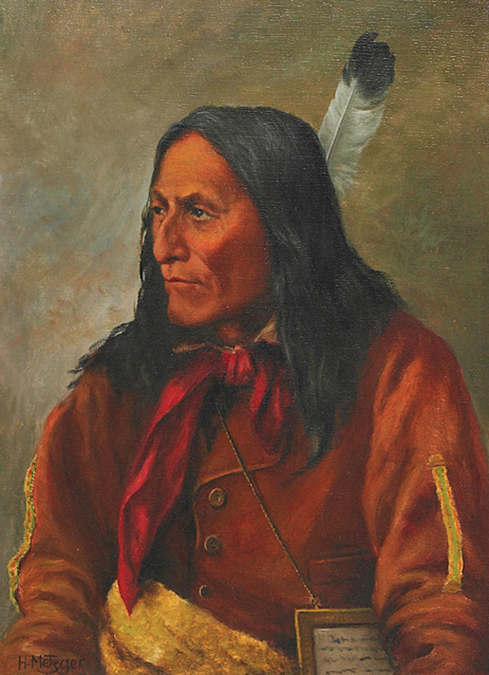 Image result for chief crowfoot