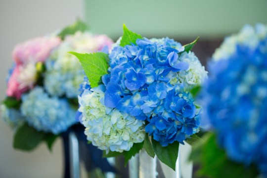 Bouquets by Katydid Flowers. Photo courtesy of Nicole Lopez Photography.