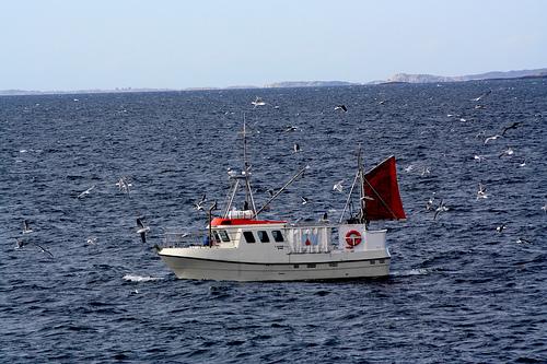 Finanskrisa  blir  fiskerikrise