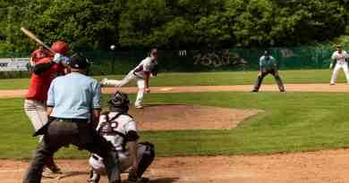 Baseball bei den Flamingos
