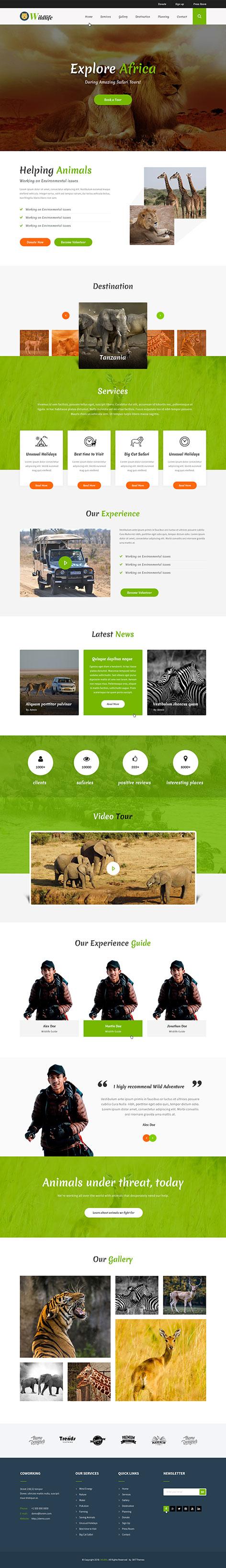 safari WordPress theme