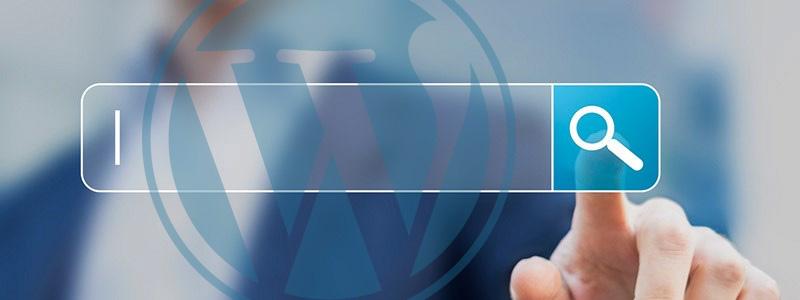 Improve the WordPress Search