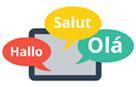 Multilingual Plugins Support