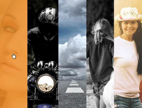 panorama pro WordPress theme